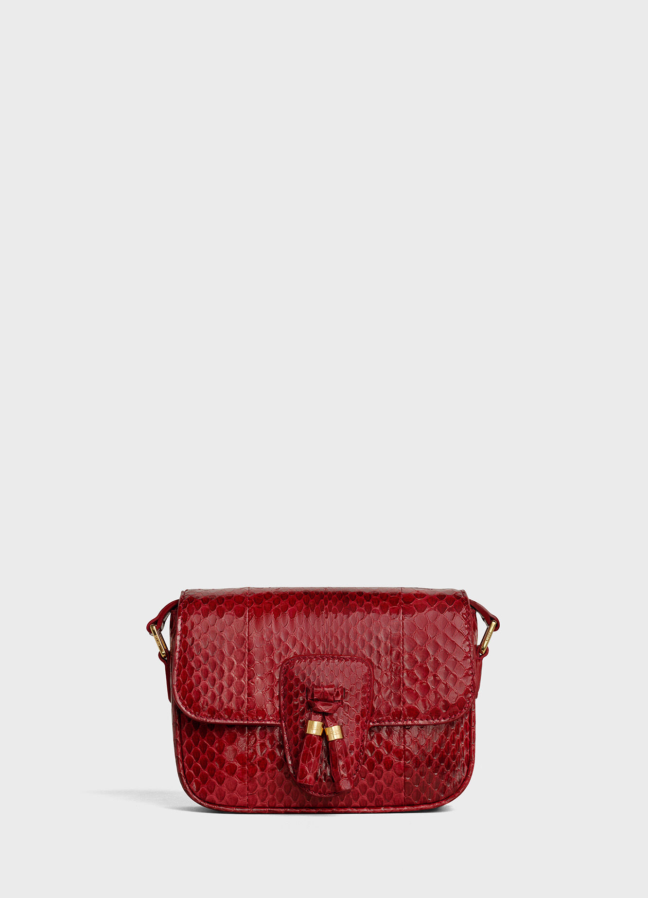 CELINE TEEN TASSELS BAG IN WATERSNAKE